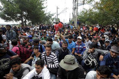 4732663_6_b4e5_des-migrants-en-provenance-de-grece-sont_8b168f932ebab160f650251f43cc6aeb