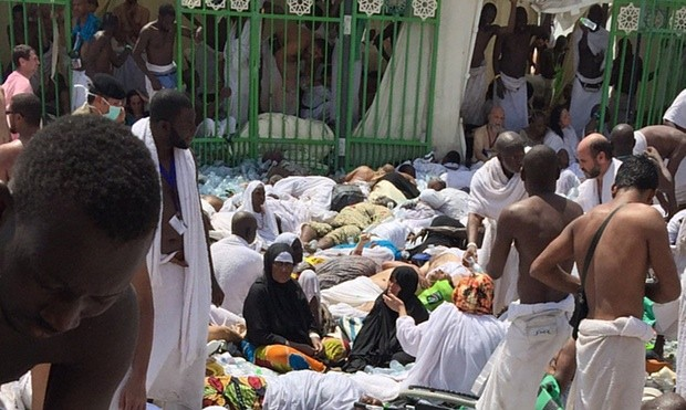 More than 700 Pilgrims dead in stampede